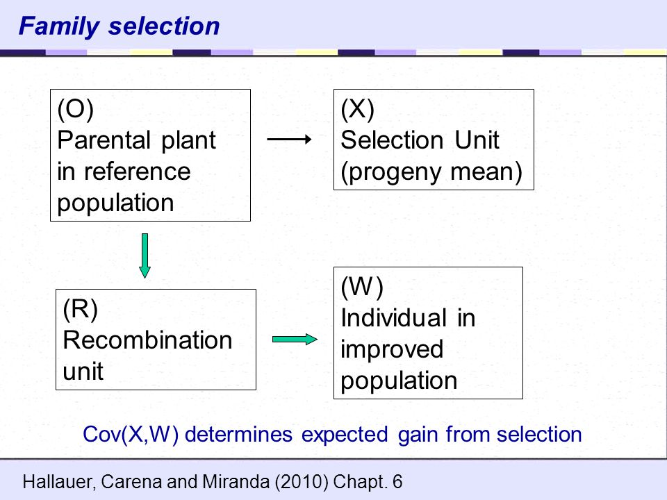 in reference population (X) Selection Unit (progeny mean)