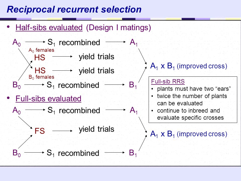 Reciprocal recurrent selection