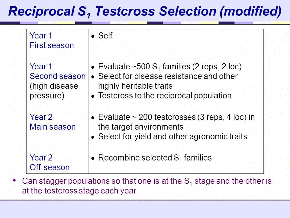 Reciprocal S1 Testcross Selection (modified)