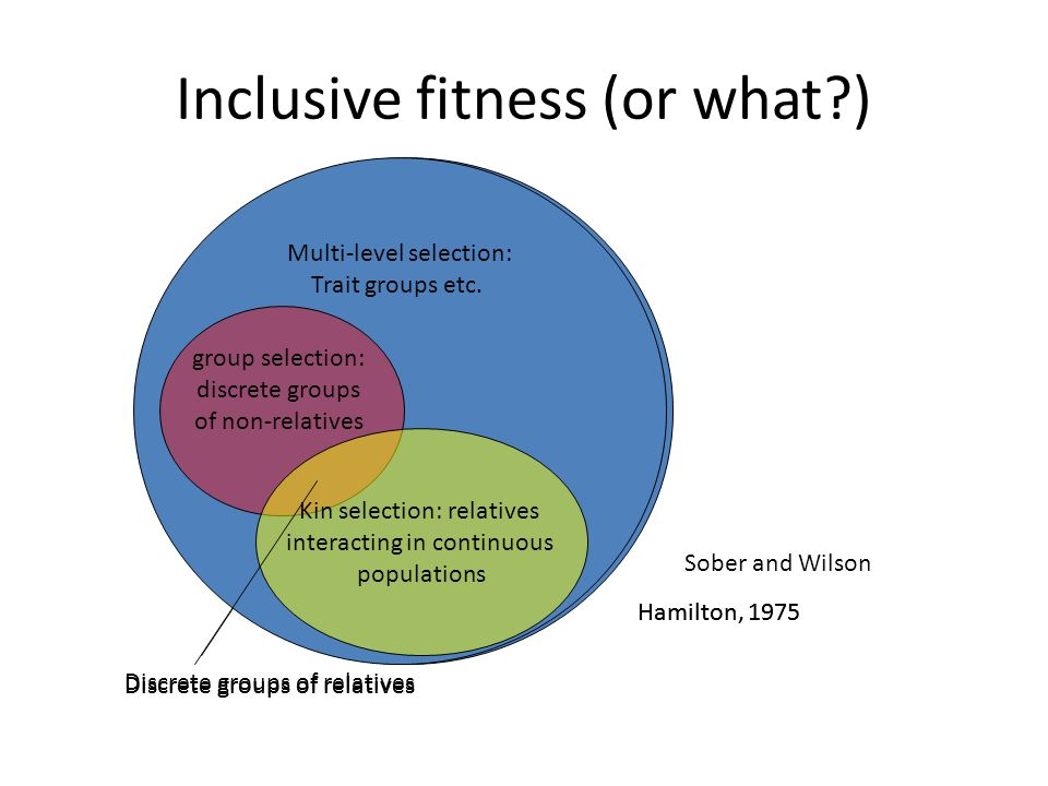 Inclusive fitness (or what )