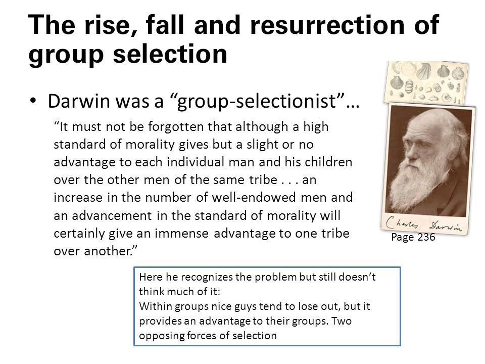 Darwin was a group-selectionist …