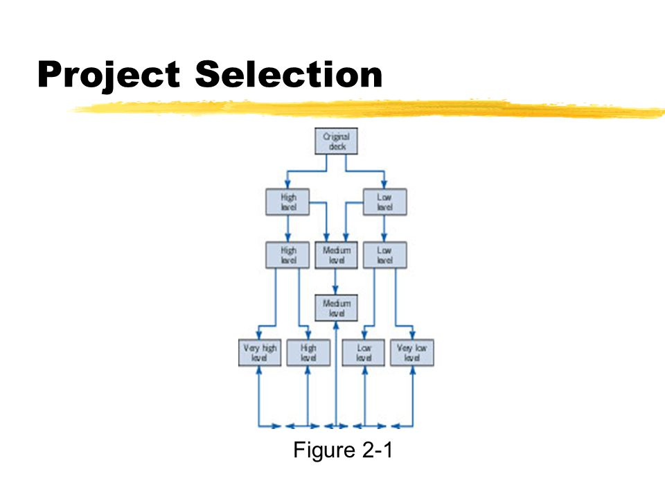 Project Selection Figure 2-1