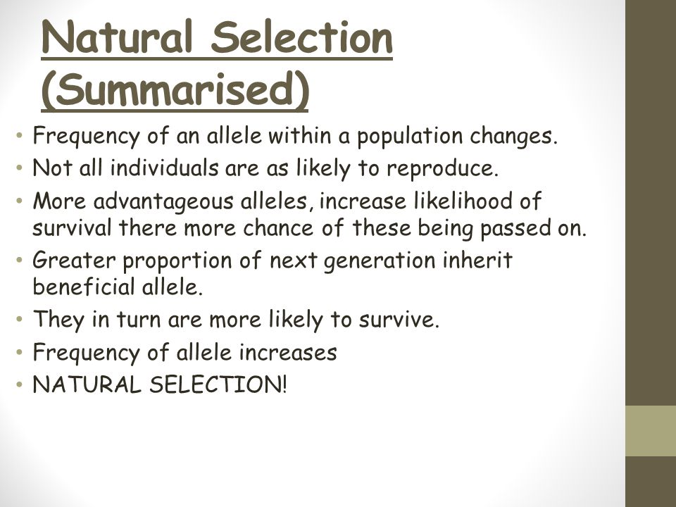 Natural Selection (Summarised)