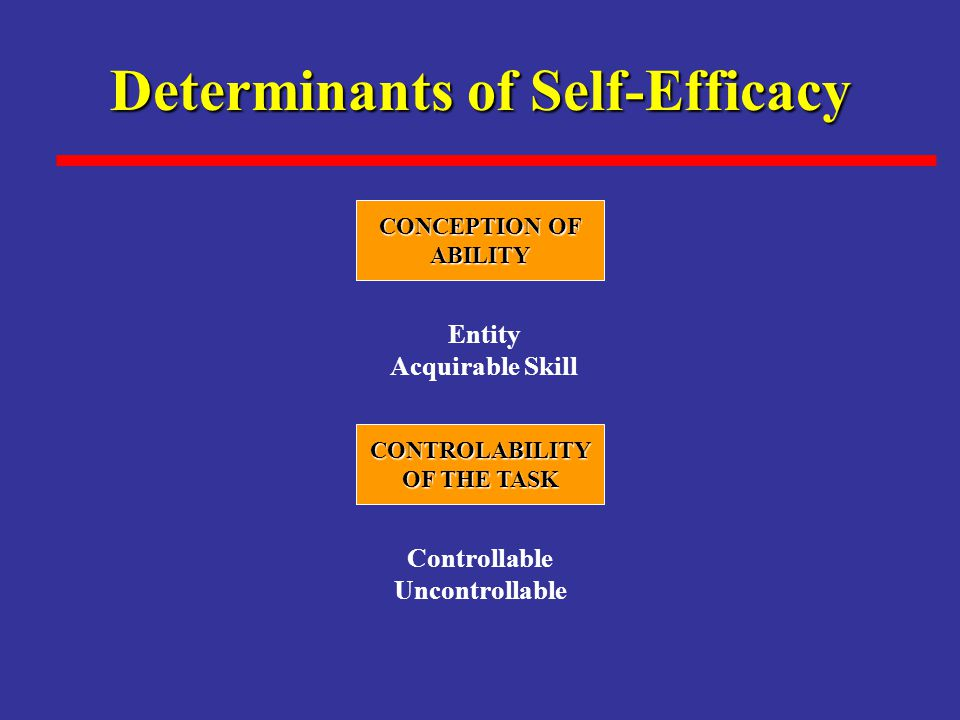 Determinants of Self-Efficacy