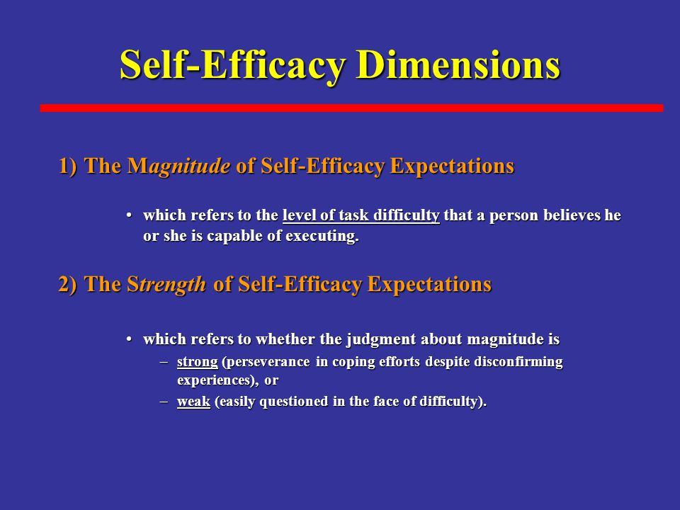 Self-Efficacy Dimensions