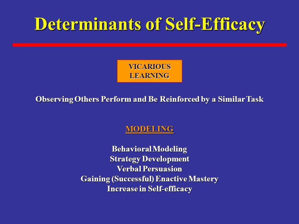 Determinants of Self-Efficacy