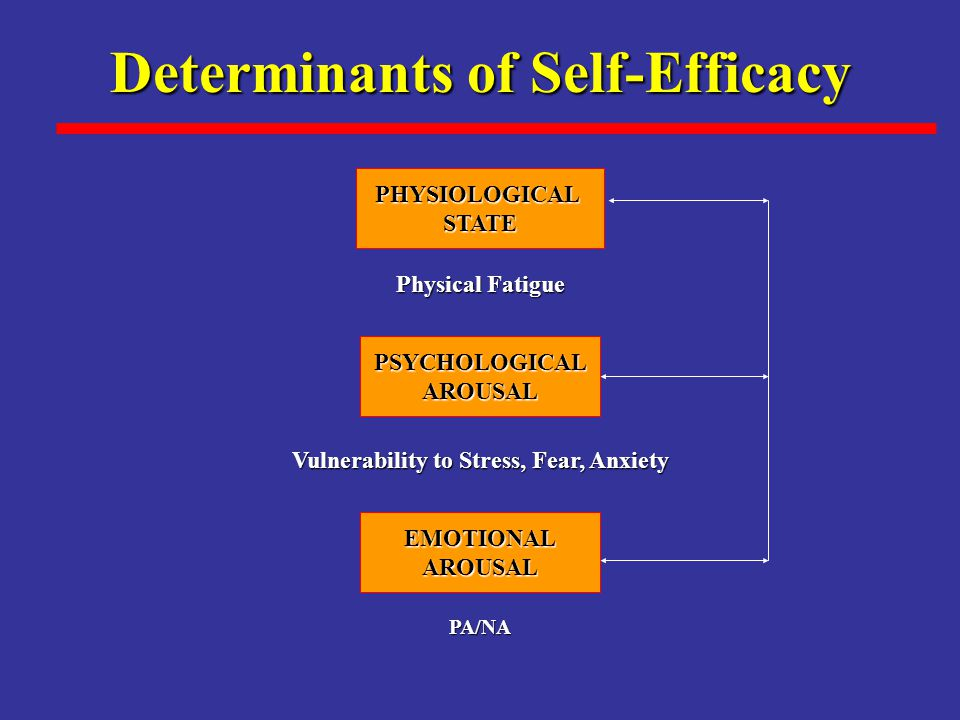 Determinants of Self-Efficacy Vulnerability to Stress, Fear, Anxiety