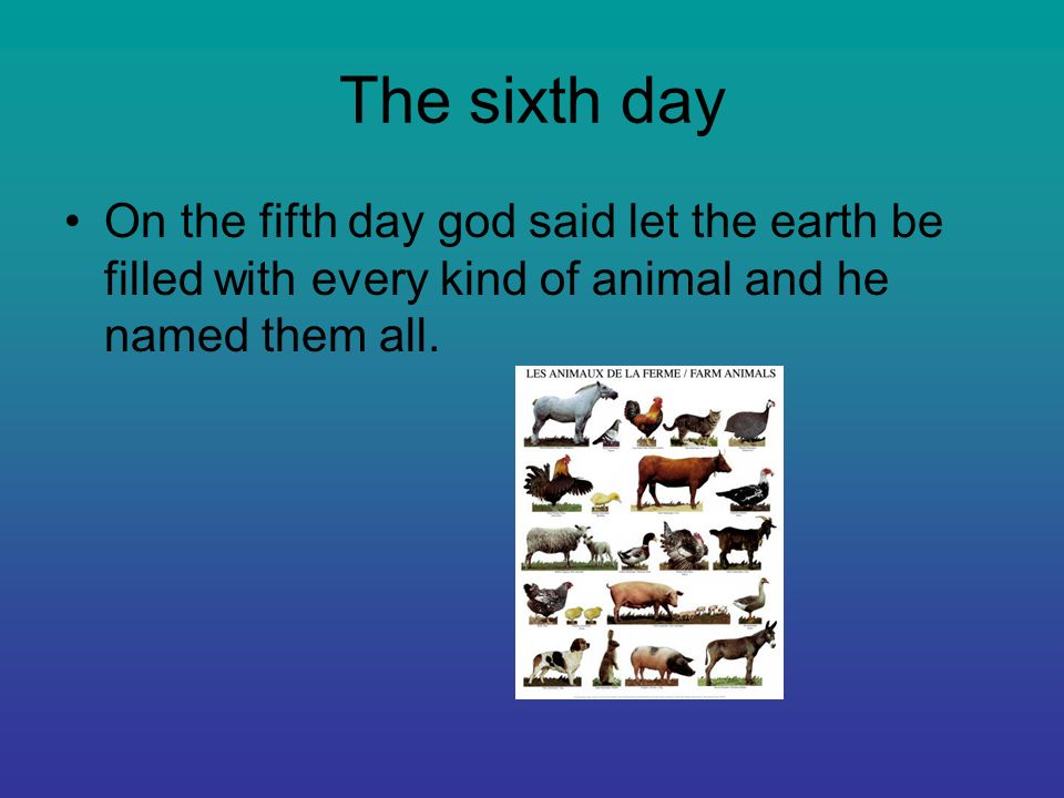 The sixth day On the fifth day god said let the earth be filled with every kind of animal and he named them all.