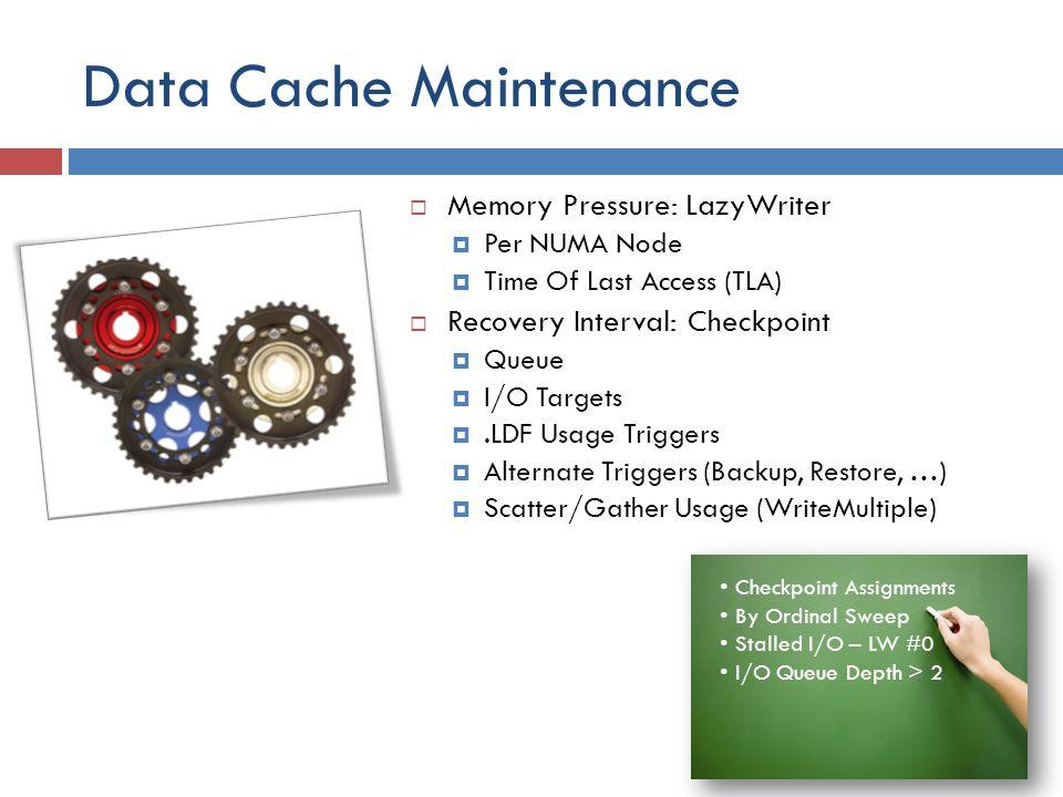 Data Cache Maintenance