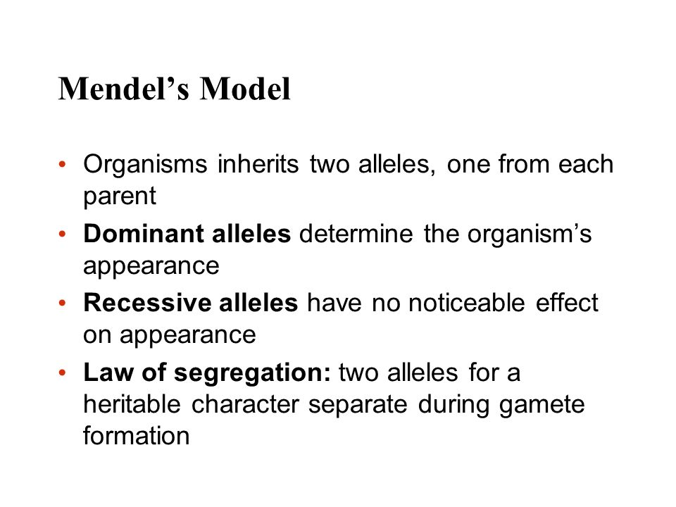 Mendel's Model Organisms inherits two alleles, one from each parent