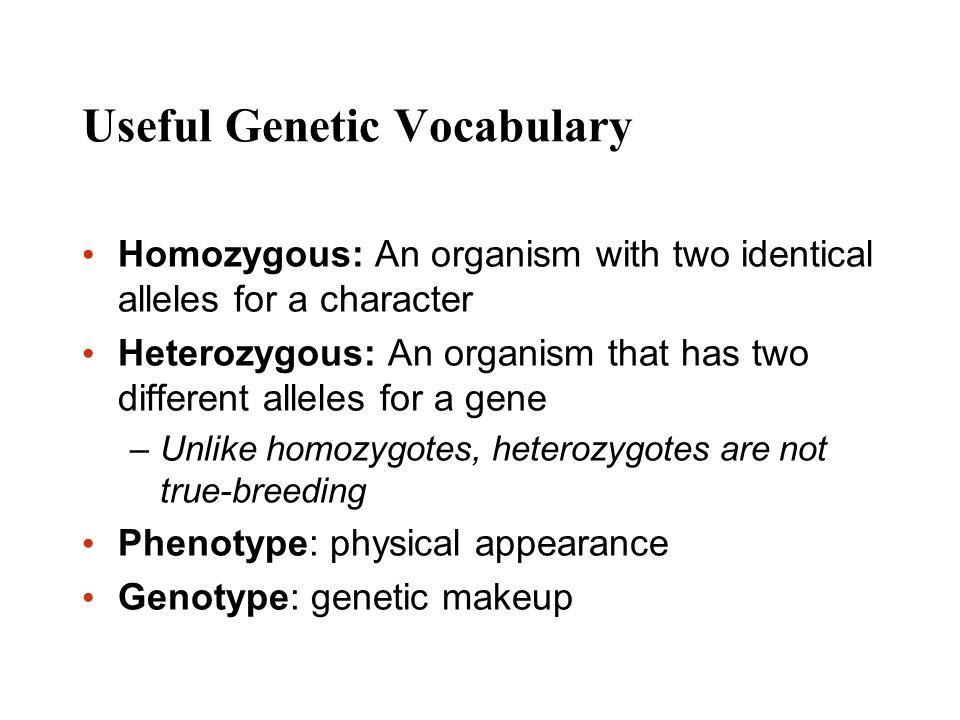 Useful Genetic Vocabulary