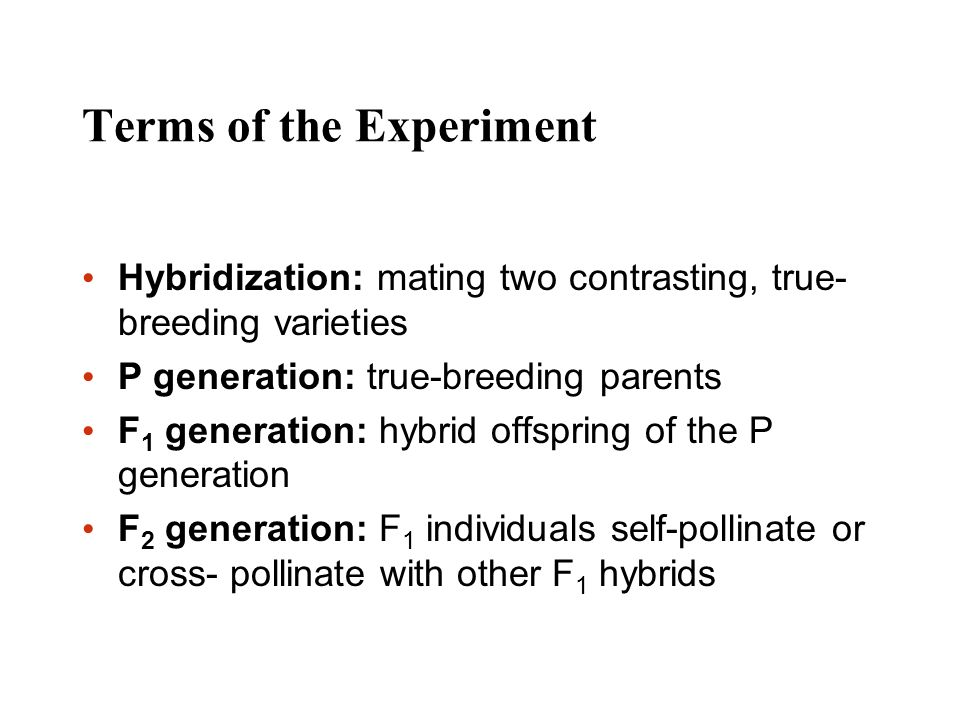 Terms of the Experiment