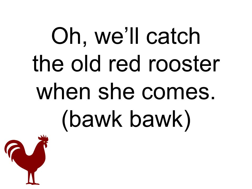 Oh, we'll catch the old red rooster when she comes. (bawk bawk)