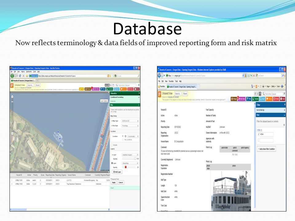 Database Now reflects terminology & data fields of improved reporting form and risk matrix