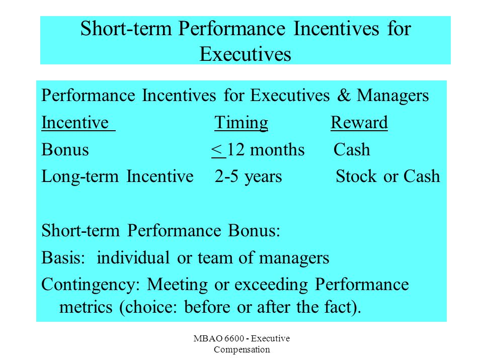 Short-term Performance Incentives for Executives