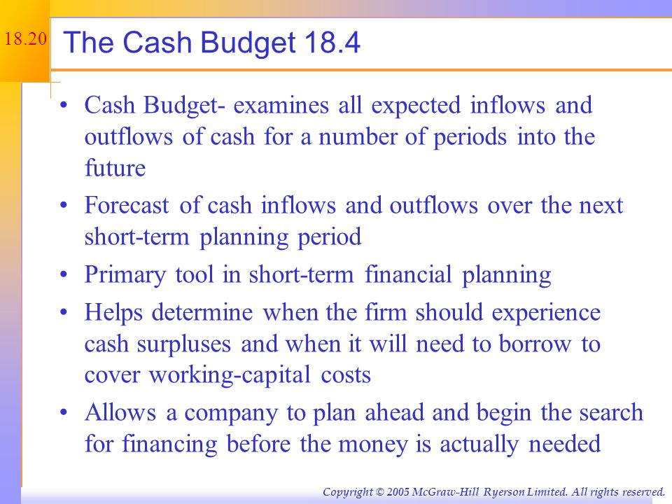 Example: Cash Budget Information