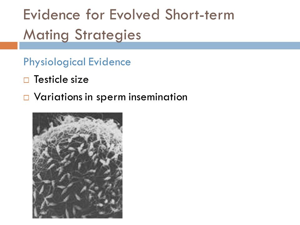 Evidence for Evolved Short-term Mating Strategies