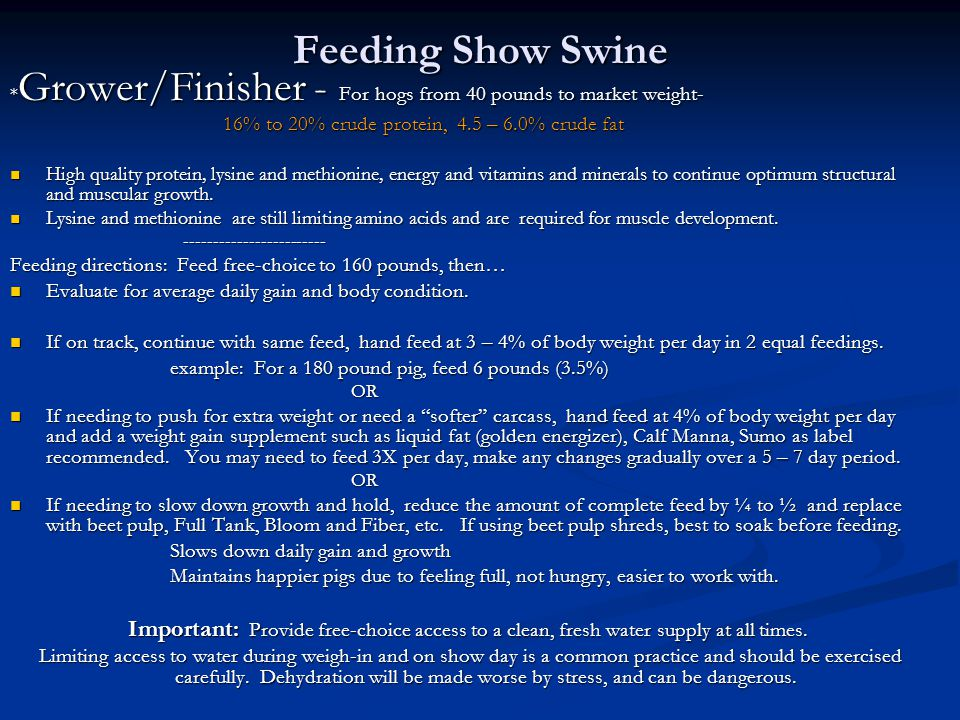 Feeding Show Swine *Grower/Finisher - For hogs from 40 pounds to market weight- 16% to 20% crude protein, 4.5 – 6.0% crude fat.