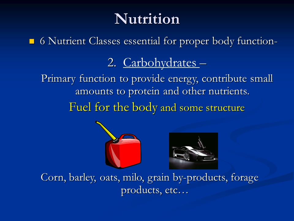 Nutrition 2. Carbohydrates – Fuel for the body and some structure