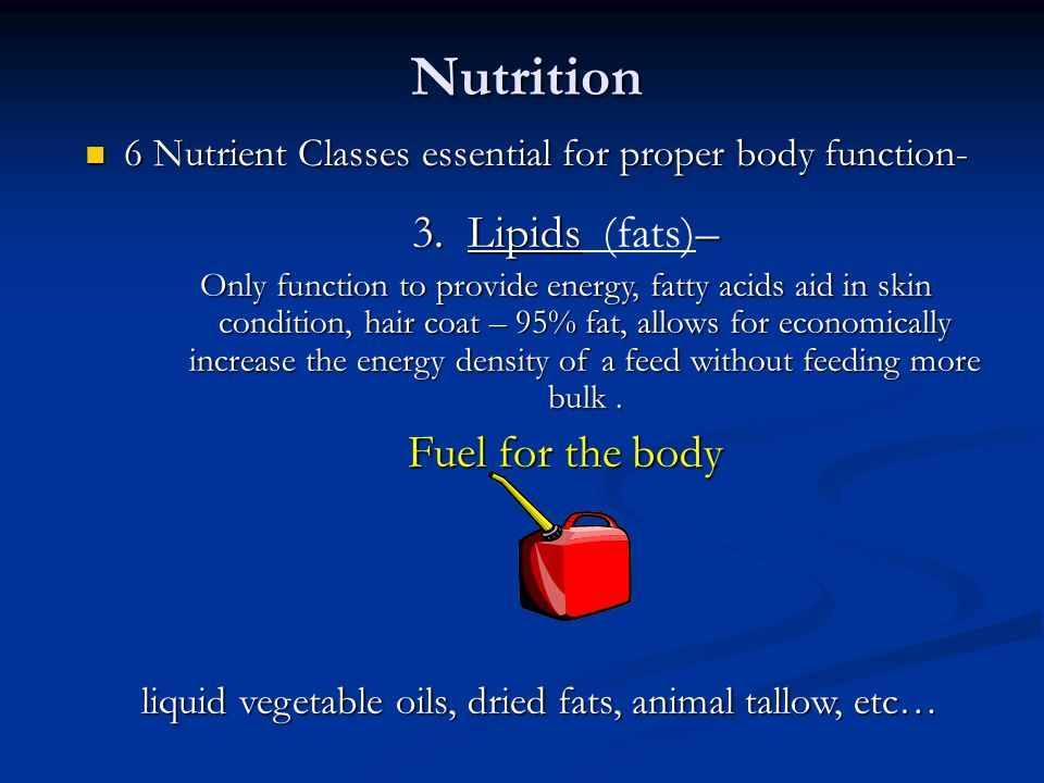 Nutrition 3. Lipids (fats)– Fuel for the body