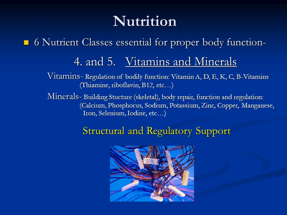 Nutrition 4. and 5. Vitamins and Minerals