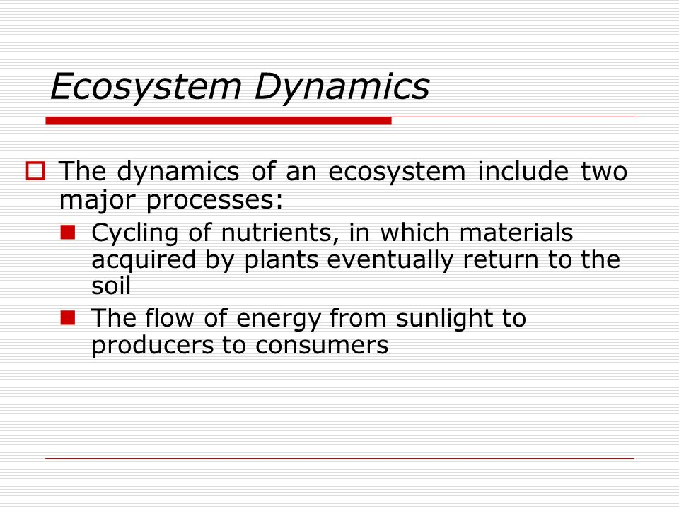 Ecosystem Dynamics The dynamics of an ecosystem include two major processes: