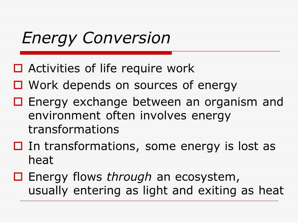 Energy Conversion Activities of life require work