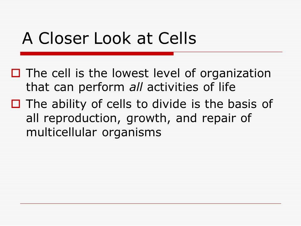 A Closer Look at Cells The cell is the lowest level of organization that can perform all activities of life.