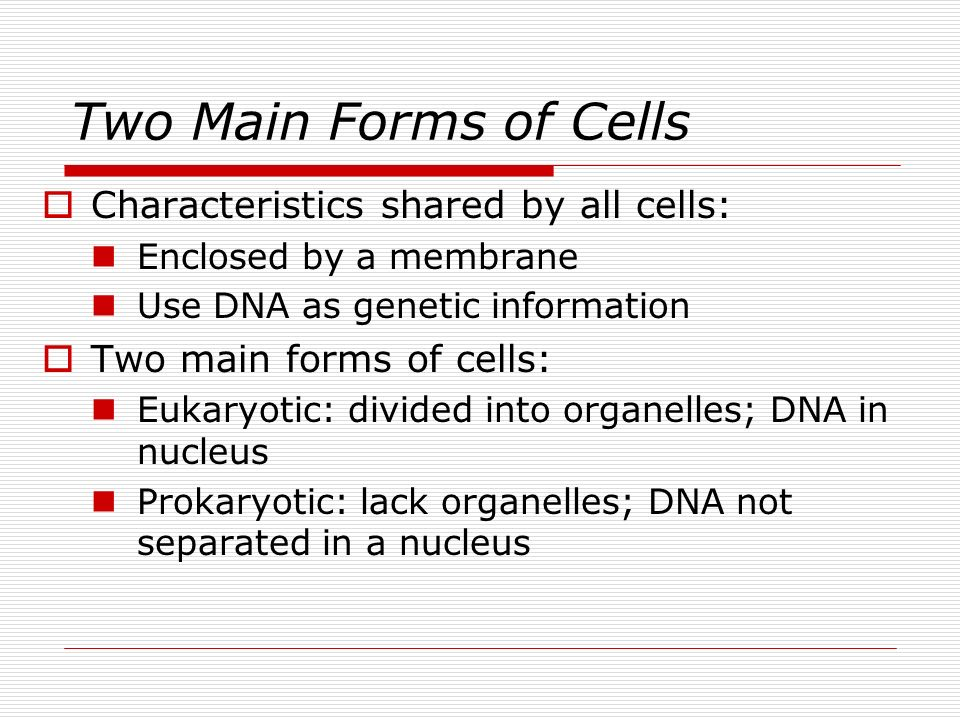 Two Main Forms of Cells Characteristics shared by all cells: