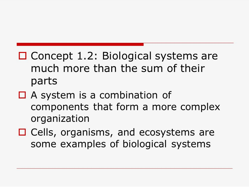 Concept 1.2: Biological systems are much more than the sum of their parts