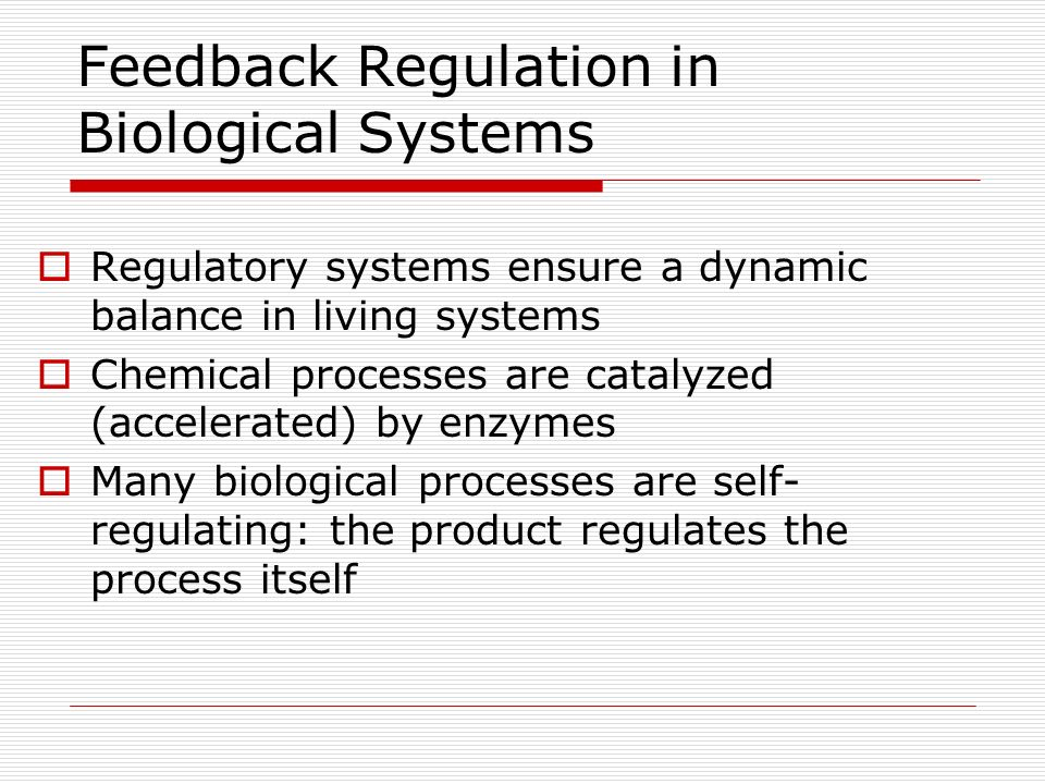 Feedback Regulation in Biological Systems