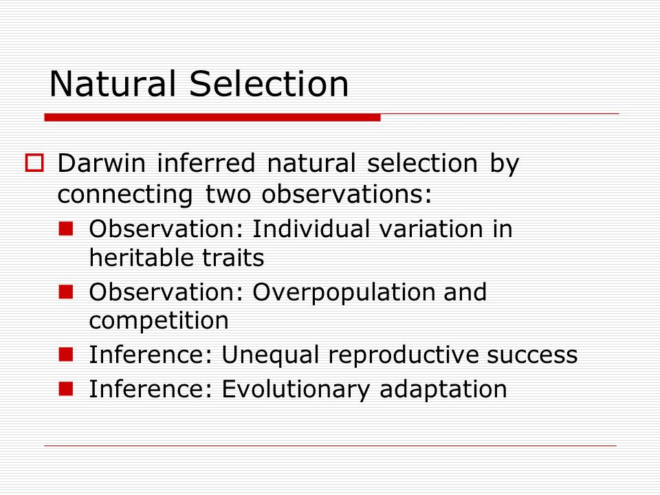Natural Selection Darwin inferred natural selection by connecting two observations: Observation: Individual variation in heritable traits.