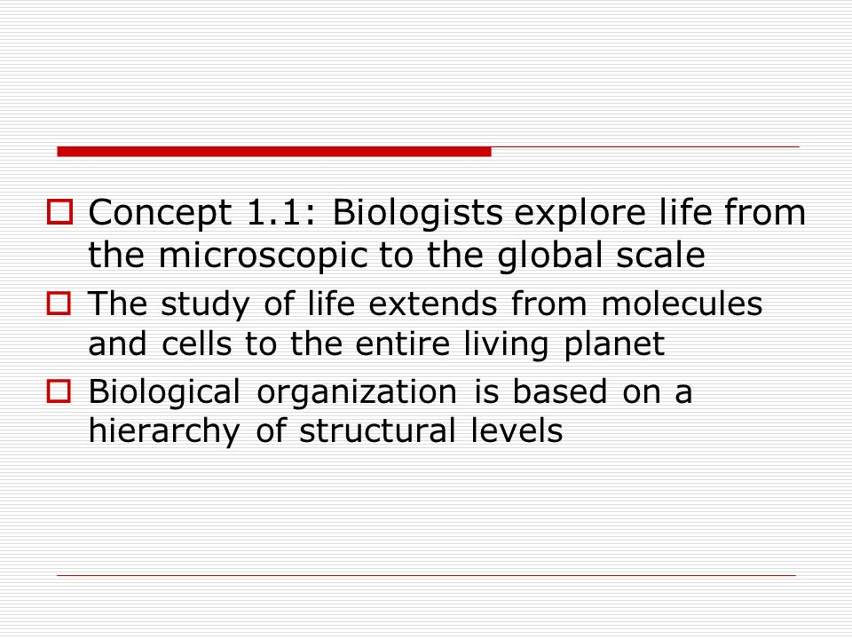 Concept 1.1: Biologists explore life from the microscopic to the global scale