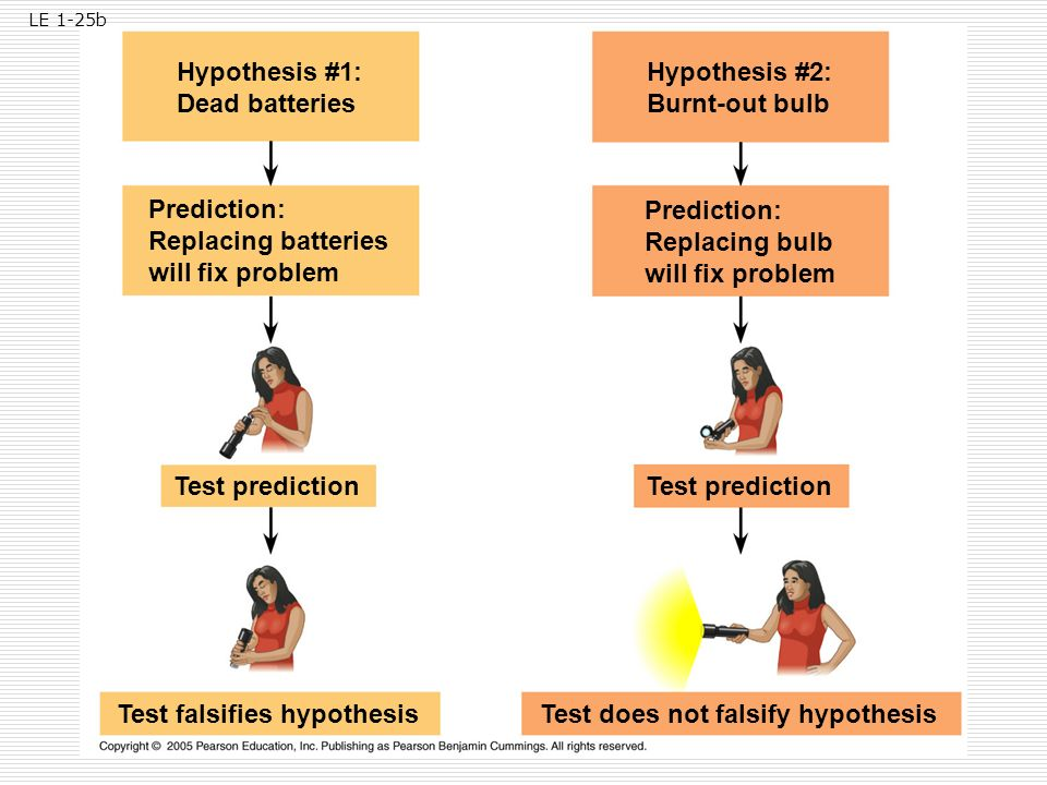 Test falsifies hypothesis Test does not falsify hypothesis