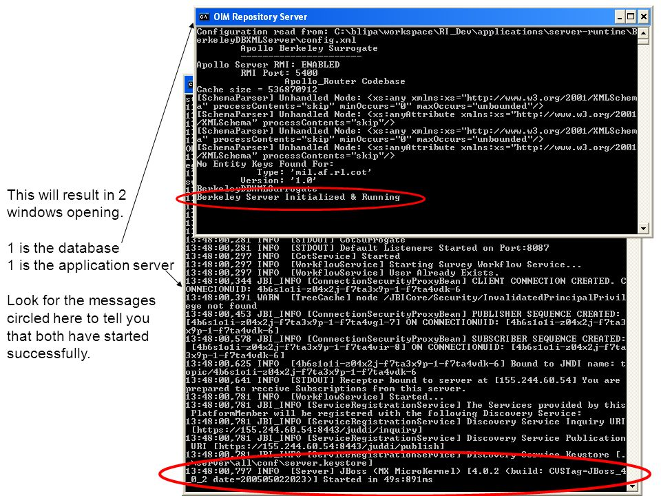 This will result in 2 windows opening. 1 is the database. 1 is the application server. Look for the messages.