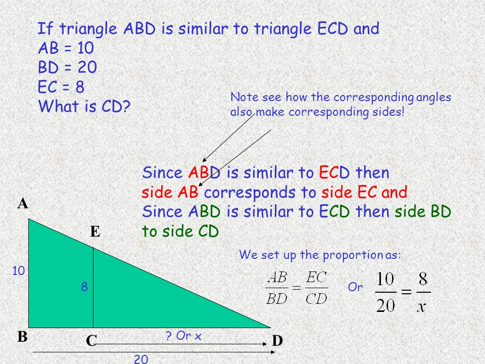If triangle ABD is similar to triangle ECD and AB = 10 BD = 20 EC = 8