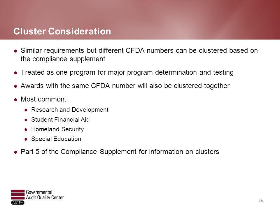 Risk Assessment and Major Program Determination