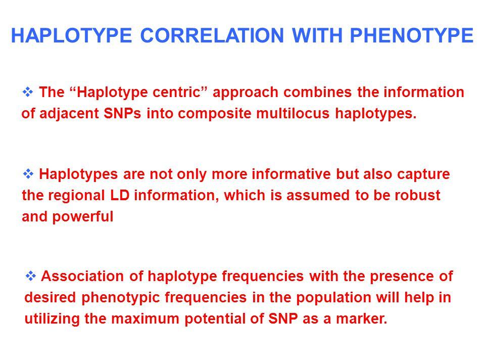 HAPLOTYPE CORRELATION WITH PHENOTYPE