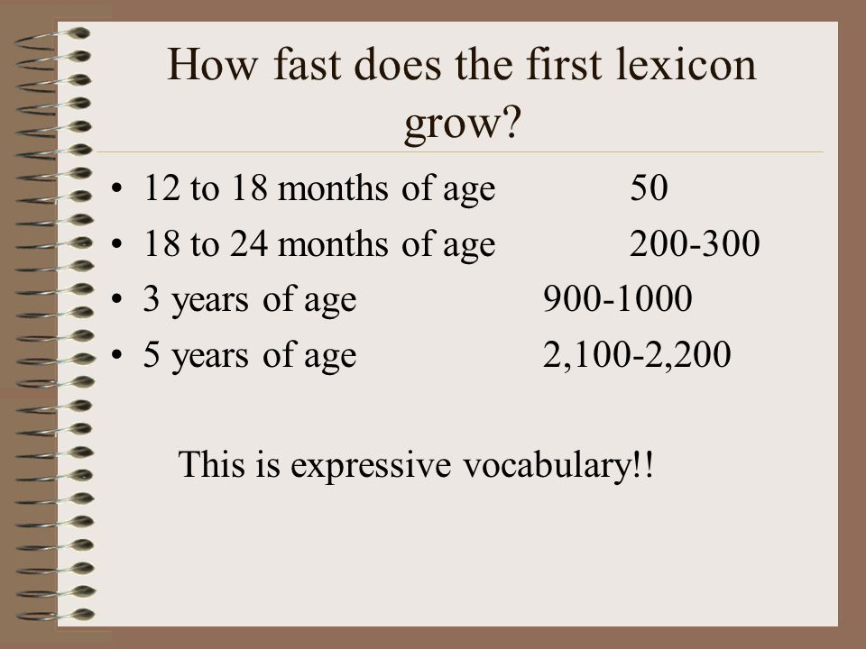 How fast does the first lexicon grow