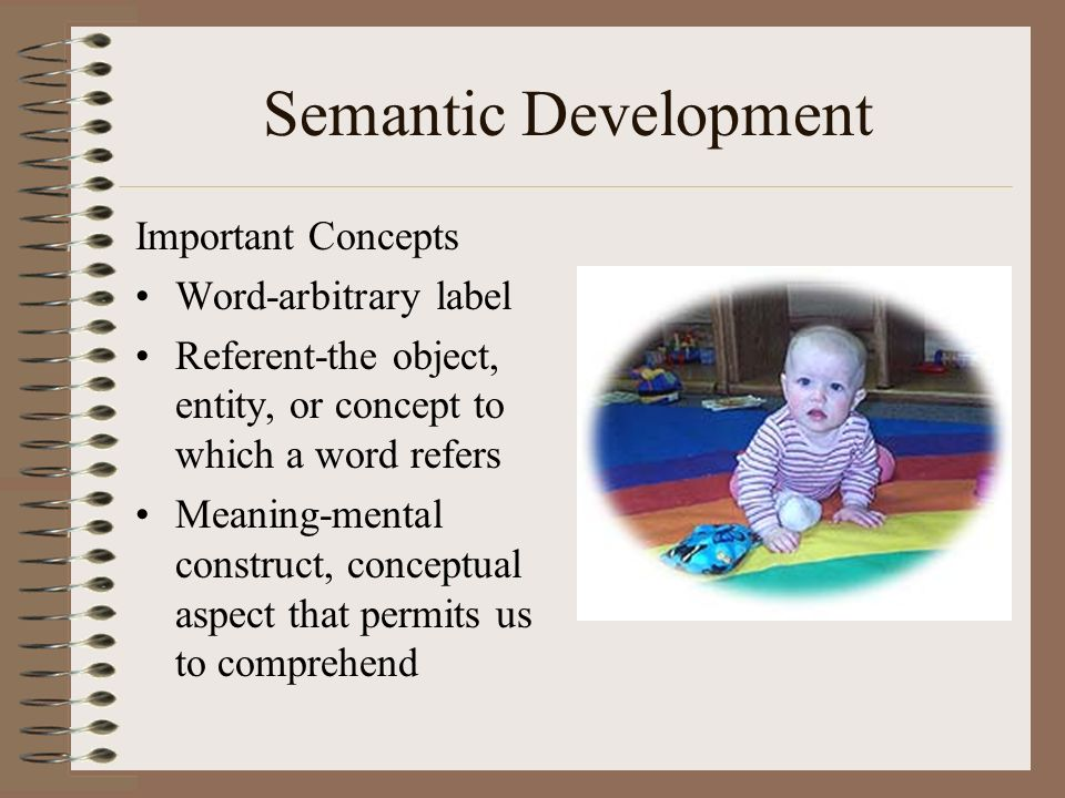 Semantic Development Important Concepts Word-arbitrary label