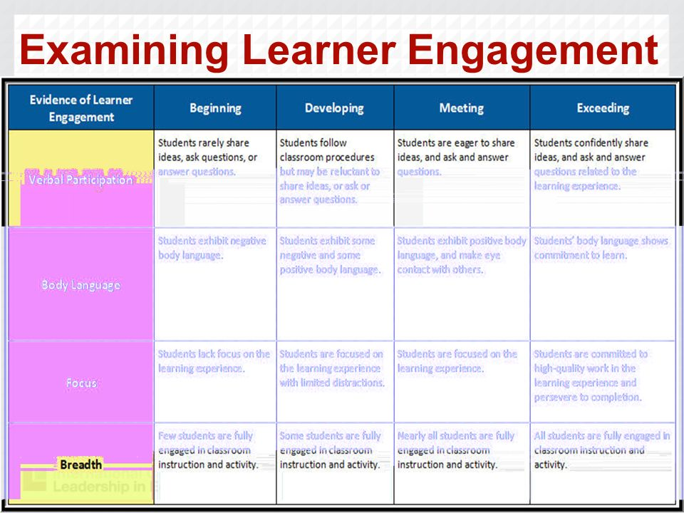 Examining Learner Engagement