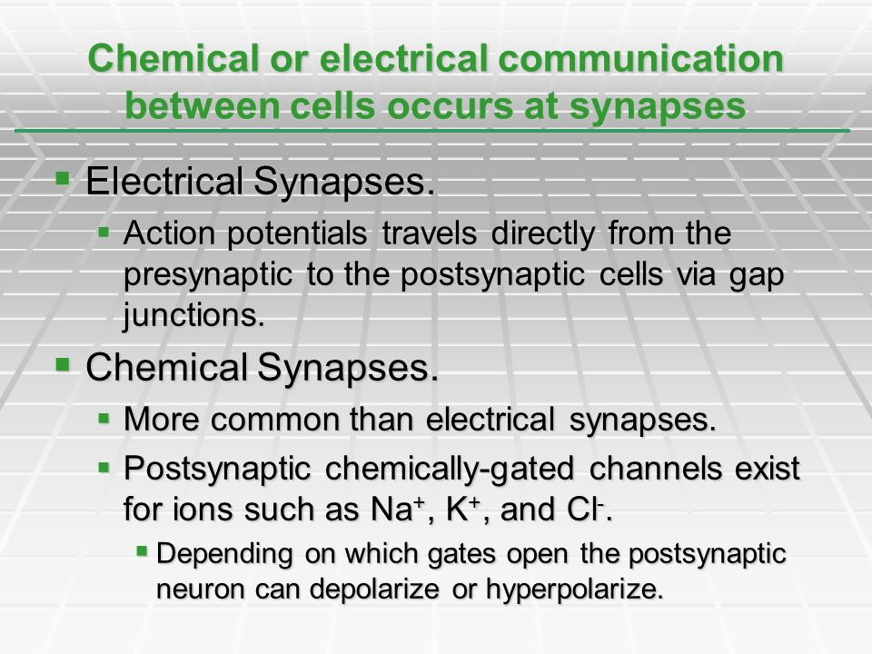 Chemical or electrical communication between cells occurs at synapses