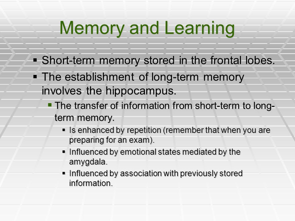 Memory and Learning Short-term memory stored in the frontal lobes.