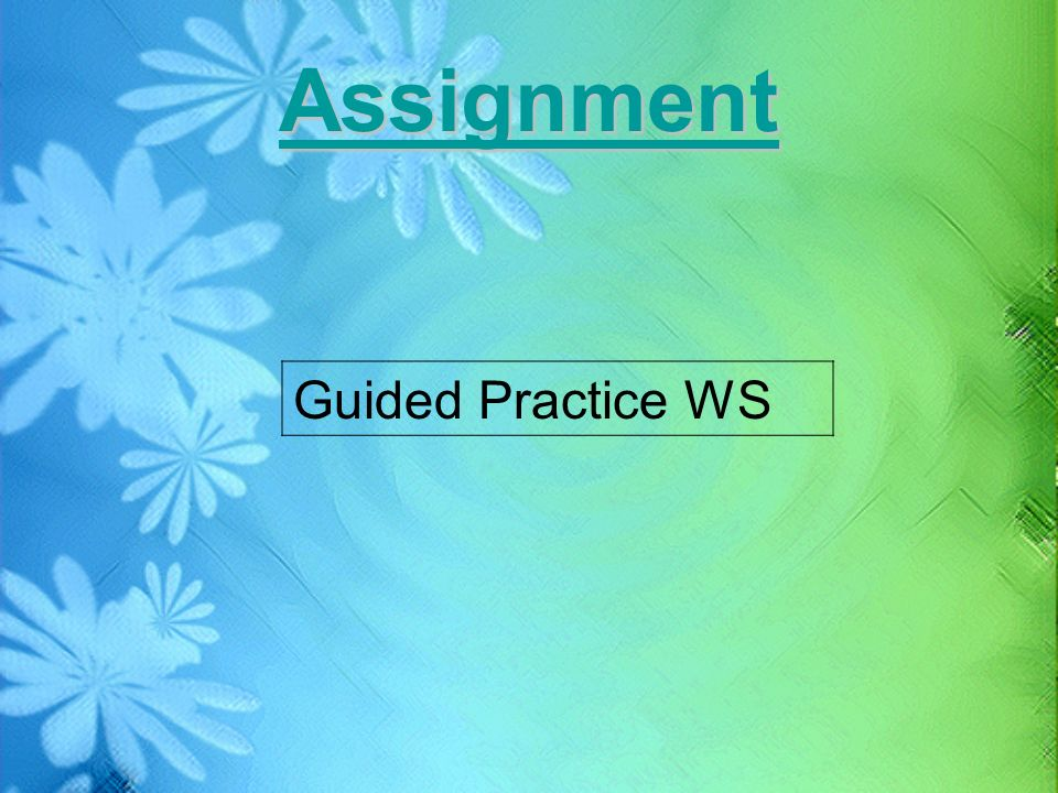 Assignment Guided Practice WS