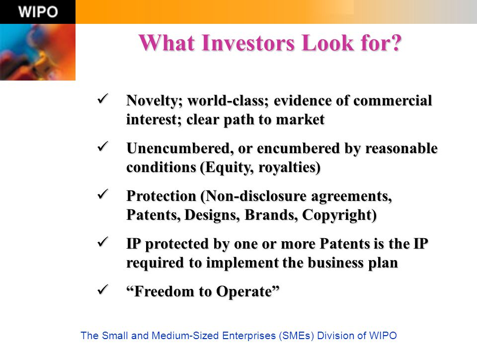 What Investors Look for