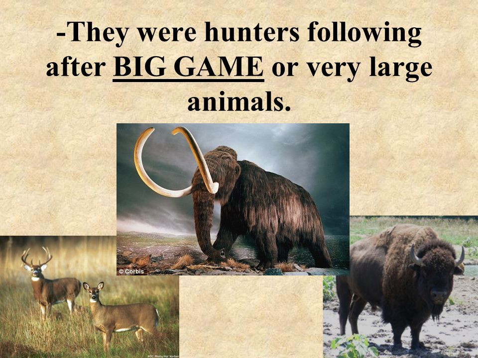 -They were hunters following after BIG GAME or very large animals.