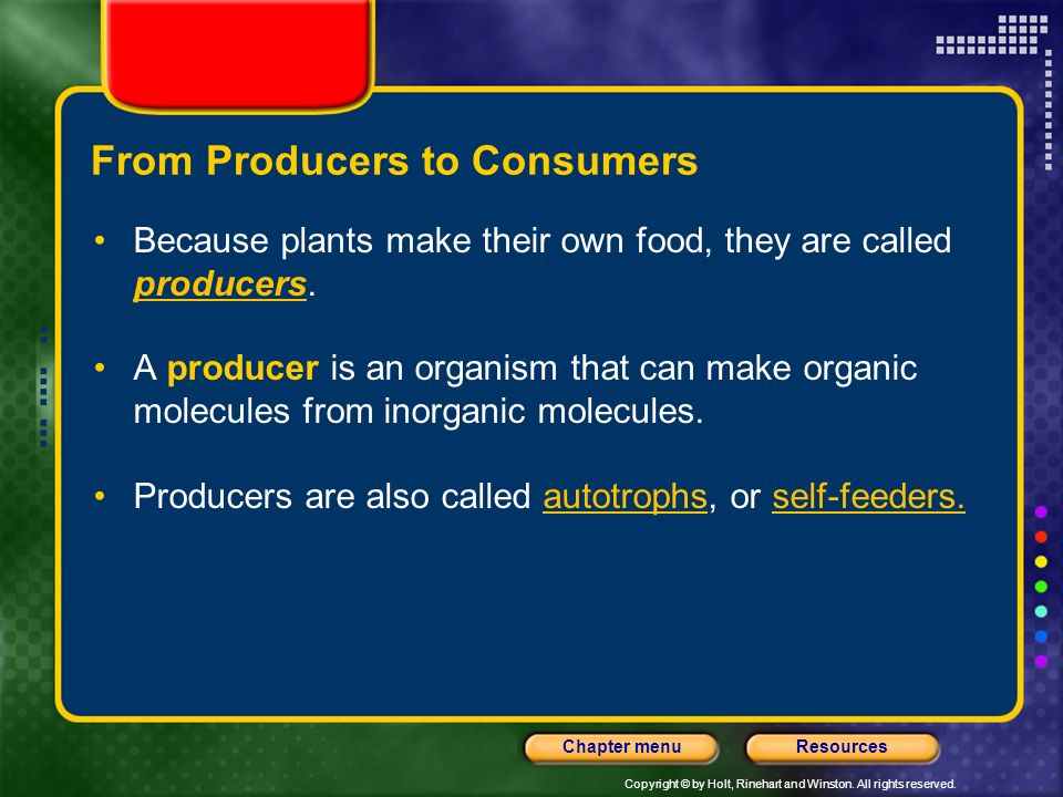 From Producers to Consumers