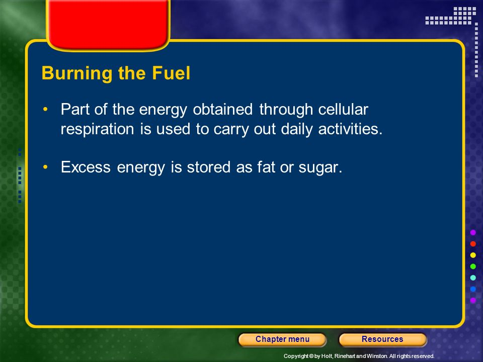 Burning the Fuel Part of the energy obtained through cellular respiration is used to carry out daily activities.