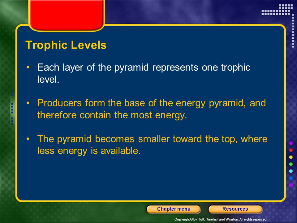 Trophic Levels Each layer of the pyramid represents one trophic level.