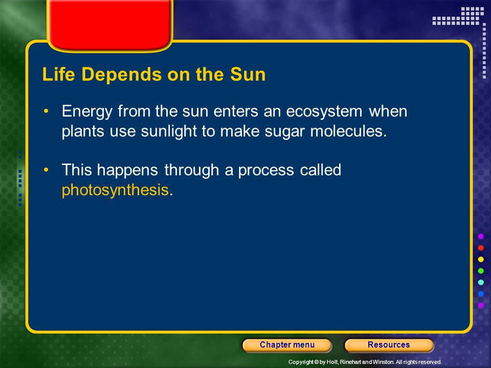 Life Depends on the Sun Energy from the sun enters an ecosystem when plants use sunlight to make sugar molecules.